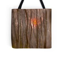 God  bless you ! My wonderful remembers  - Gesher Galicia . by Doktor Faustus. Tote Bag