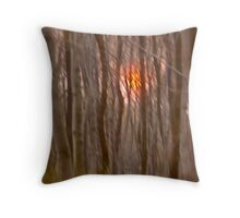God  bless you ! My wonderful remembers  - Gesher Galicia . by Doktor Faustus. Throw Pillow