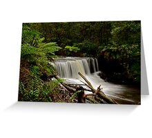 Barrengarry Creek. Greeting Card