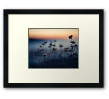 The Summers Twilight on Trevone's Thrift Framed Print