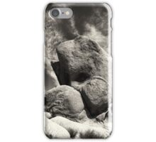 STONE WHALE iPhone Case/Skin