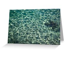 Whimsical Water Works - Crystal Clear Med and Fishes - Take One Greeting Card