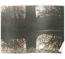 mistic tree over pond Poster