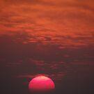 Sun's Colours III - Colores Del Sol  by Bernhard Matejka