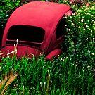 Car II by Clockworkmary