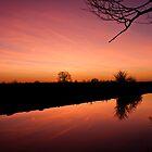Canal at dawn by David Isaacson