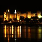 Conway Castle by Trudi's Images