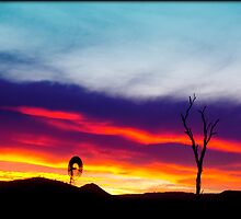 Sunset at Iredale by Tricia Birt