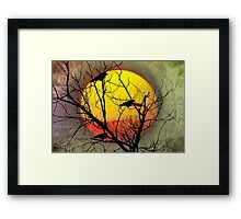 Three Blackbirds Framed Print