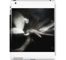 Mirrored Turtles iPad Case/Skin