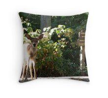 deer sustenance Throw Pillow