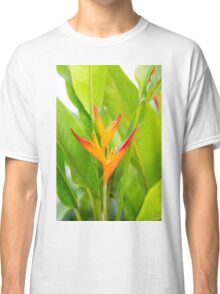 Heliconia flower with green leaves Classic T-Shirt