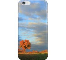 Old Auburn Sunset iPhone Case/Skin