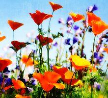 Spring Bouquet  by Saija  Lehtonen