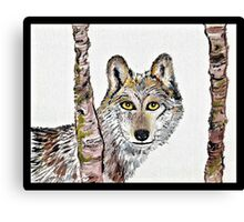 The cunning wolf Canvas Print