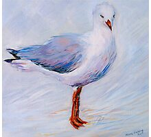 'My dear Gull...' Photographic Print