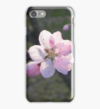 Peach Blossom iPhone Case/Skin