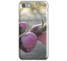 Frosted Peach Blossom iPhone Case/Skin