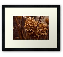 Don't eat dirty snowballs........ Framed Print