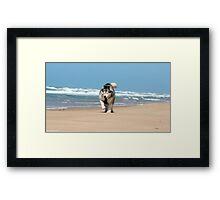 Seaspray Beach 3 Framed Print