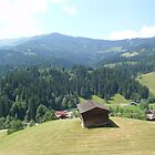 Austria From Above by taryn88