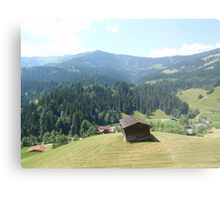 Austria From Above Metal Print
