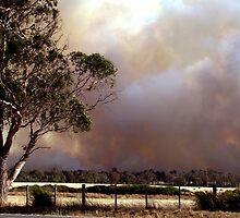Bushfires by waxyfrog