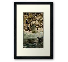 Young Penguin Framed Print