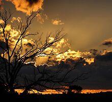 Silver Lining - Junee NSW Australia by Bev Woodman