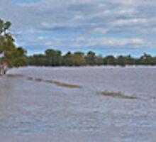 Murrumbidgee Floods Pano by bazcelt