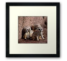 Double clean-up! Framed Print