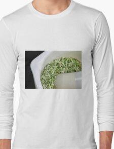 Rosemary Long Sleeve T-Shirt