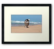 Seaspray 4 Framed Print