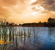 Lake by Svetlana Sewell