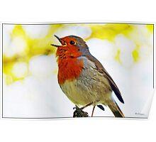 """ Robin Redbreast"" Poster"