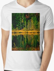 Fall Reflections Mens V-Neck T-Shirt