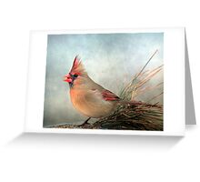 Waiting For Spring ~ Greeting Card