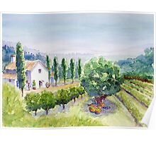 French vineyard Poster
