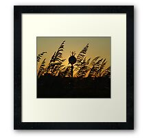 Water tower Sunset Framed Print