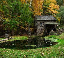 Autumn At Cuttalossa Farm I by Debra Fedchin