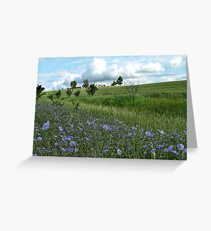 Roadside Colors Greeting Card