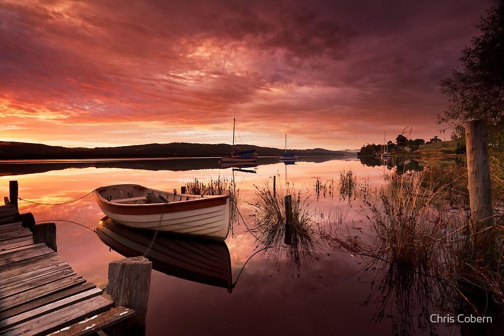 Row Boat, South Franklin, Tasmania #2 by Chris Cobern