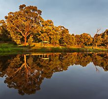 Reflections by peterperfect
