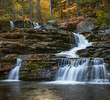 Factory Falls by Debra Fedchin