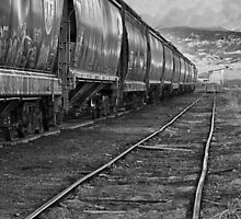 Next Tracks In Black and White by Bo Insogna