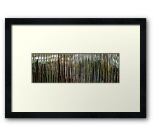 Moviebarcode: Sequence from Manufactured Landscapes (2006) Framed Print