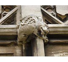 York grotesque Photographic Print