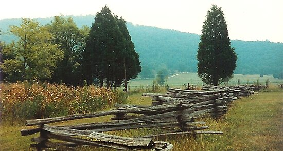 Alabama Fence line by © Bob Hall
