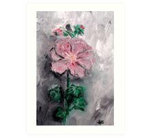 Shadowed Petals Art Print
