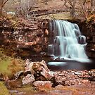 East Gill Force by John Hare